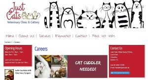 Just Cats Veterinary Clinic & Cattery