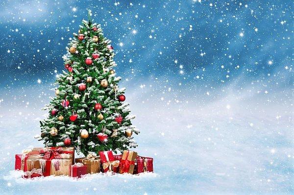 WWF Natale sostenibile